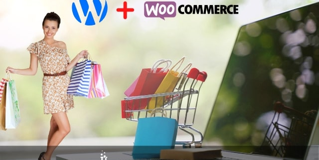 ecommerce con wordpress torino web evolutions