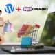 ecommerce con wordpress torino web evolutions